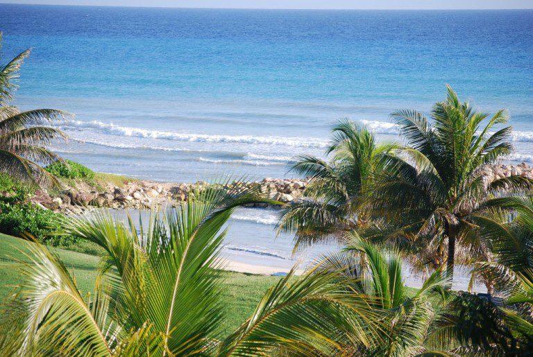 Swim in Jamaica